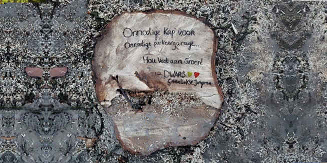Omgehakte boom met DWARS-commentaar