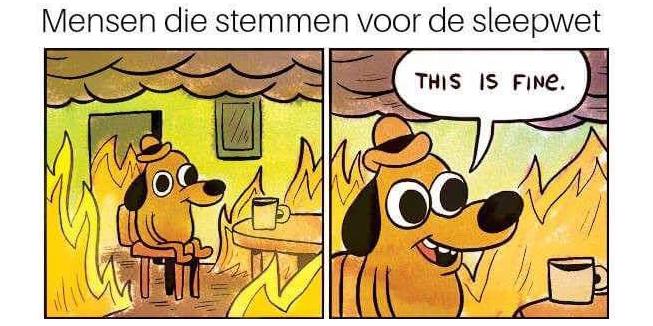 Memes: Mensen die stemmen voor de Sleepwet, this is fine