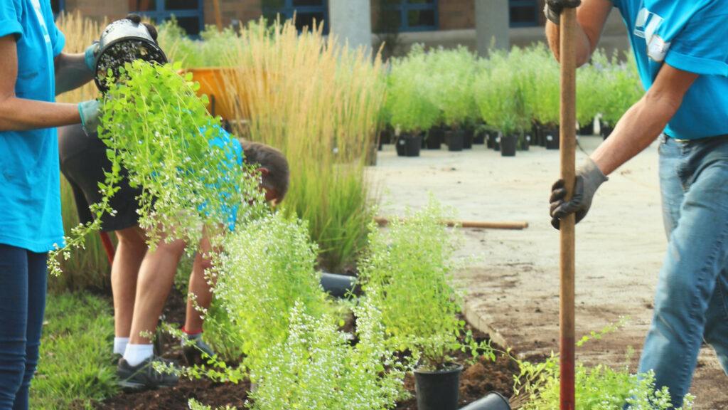 vrijwilligers werken aan een tuin